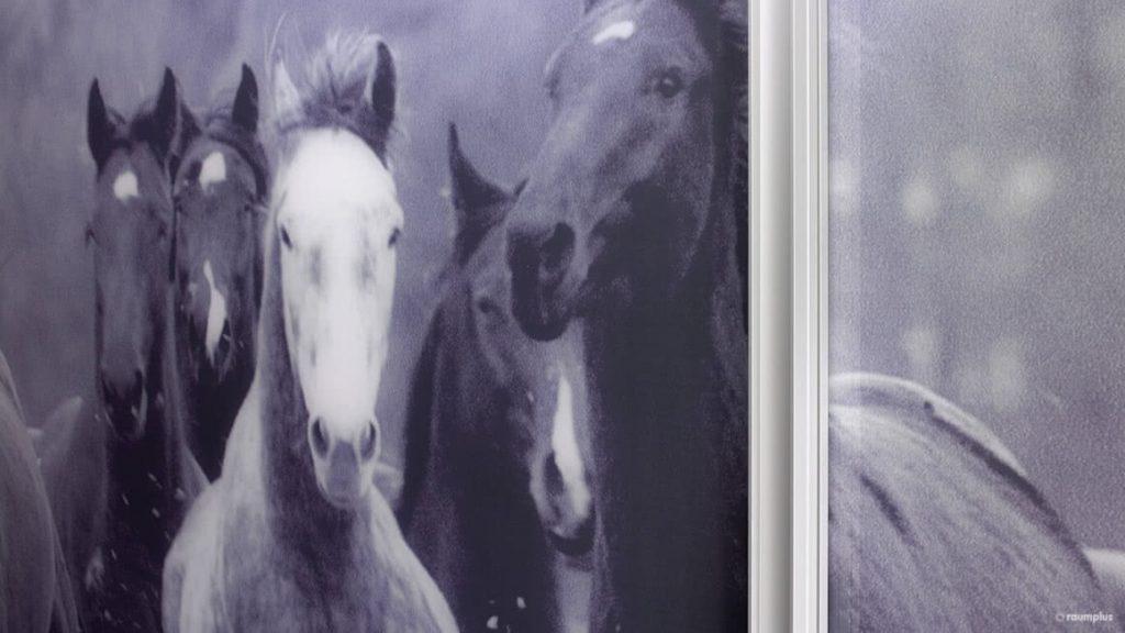 """GLEITTÜRSYSTEM """"HORSEPOWER"""""""